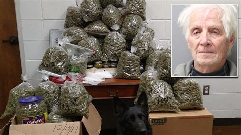 Elderly Couple Claims 60 Pounds of Marijuana Found in
