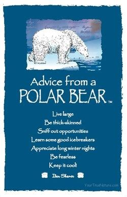 Quotes about Polar Bears (50 quotes)