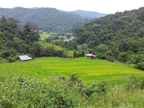 The Mystery of Northern Thailand | Private Tour Guide in